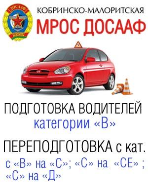 Кобринско-Малоритская МРОС ДОСААФ