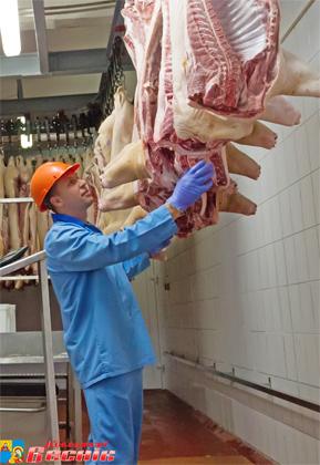 Мясо 2