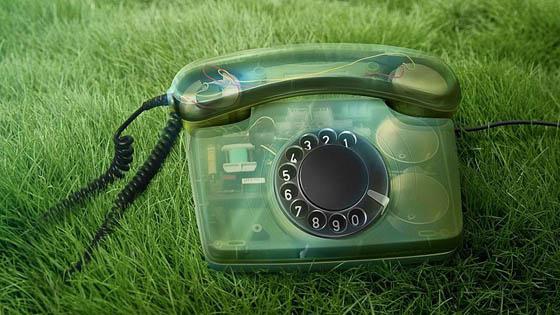 Беспокоит экологическая проблема?  Звоните по «Зелёному телефону»!