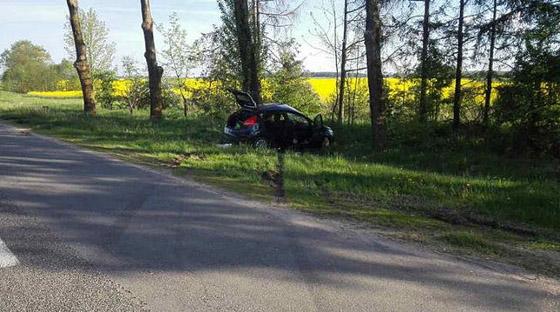 Легковушка врезалась в дерево в Каменецком районе: пострадала 26-летняя кобринчанка