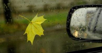 На дороги приходит осень