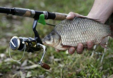 С 19 мая в рыболовных угодьях Брестской области закончился запрет на лов всех видов рыбы.