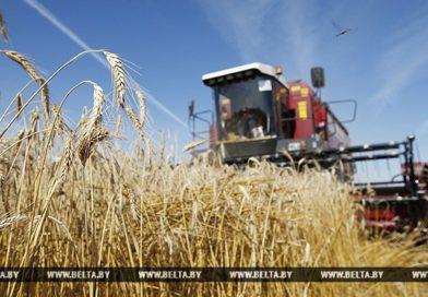 Более 40 новых комбайнов пополнят парк зерноуборочной техники Брестской области