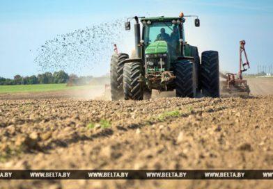 Сев озимых в Брестской области планируют завершить до 1 октября