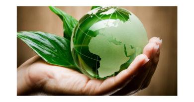 5 июня – День охраны окружающей среды